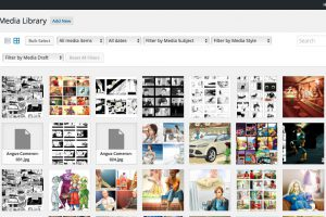 """List or Grid formats. See icons under """"Media Library"""""""