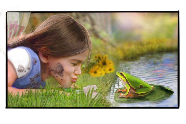 scene frog